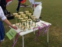 4-fovaros-versenye-2015-16